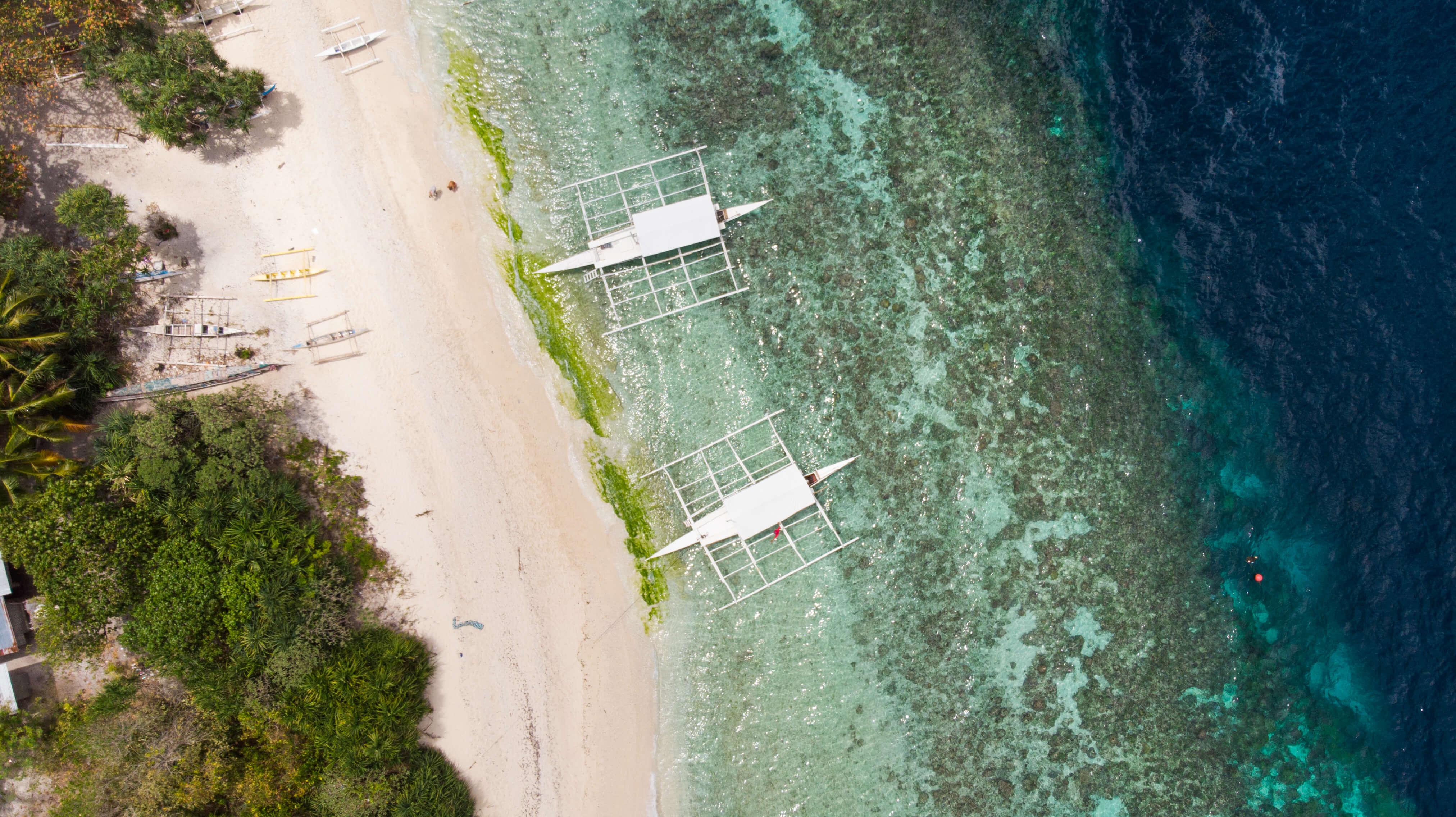 Offbeat Escapades - Travel to Bohol from Manila or Cebu Itinerary and Budget