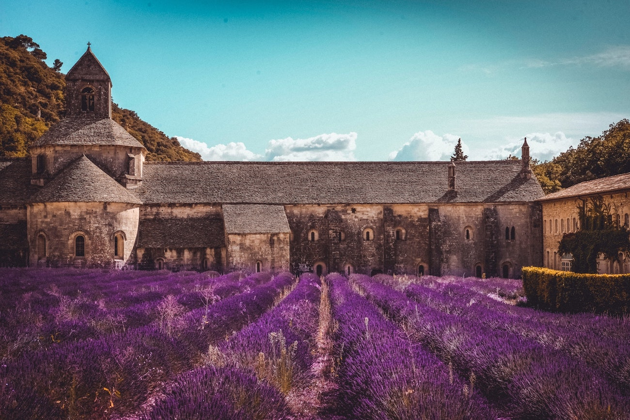 Offbeat Escapades - Best Places to See Lavender Fields in France 10
