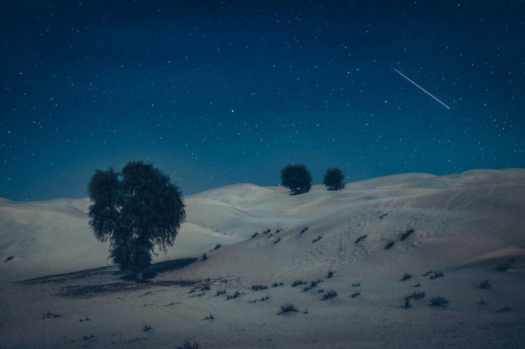 Offbeat Escapades - Dubai Desert Safaris 7