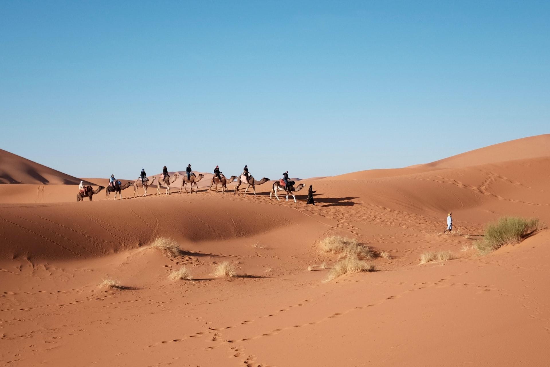 Offbeat Escapades - Dubai Desert Safaris 8