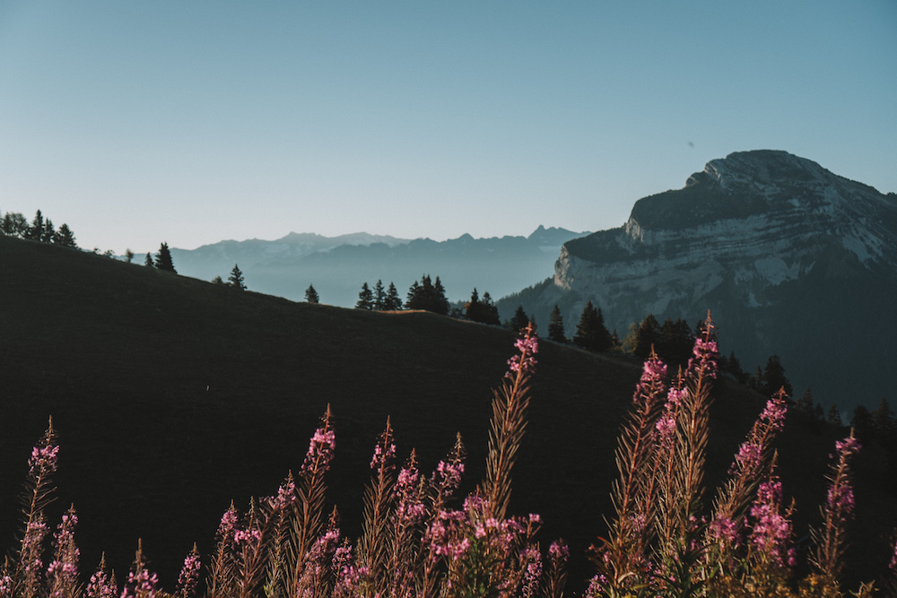Offbeat Escapades - French Alps for Digital Nomads 5